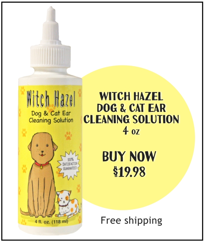 witch hazel buy pic